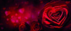 Für den Valentinstag bieten die Regional-Partner der Sparkassen Vorteils.Welt für Kunden der Sparkasse Fürth exklusive Rabatte. Profitieren auch Sie von Geld-zurück-Vorteilen.